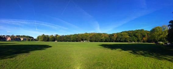 Endcliffe Park 2017